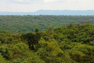 queen-elizabeth-maramagambo-1-400x400-landscape