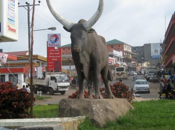 Attractions around Mbarara
